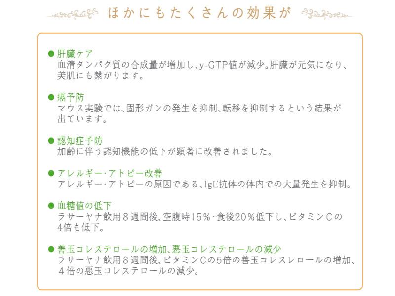 ラサーヤナ(10本入り)
